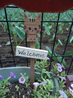 画像1: ガーデンピック大 トラネコ